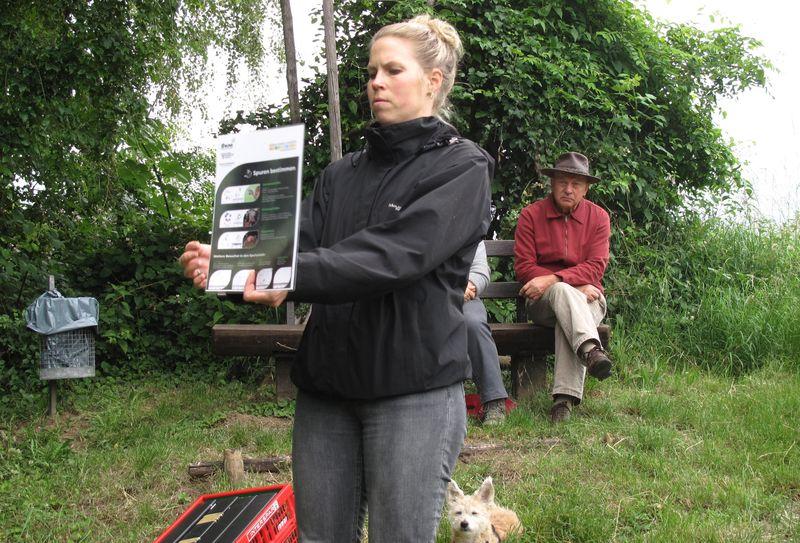 Projektkoordinatorin Susanne Steib stellt die Spuren verschiedener Schlafmäuse vor